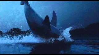 The Shark Night epic scene