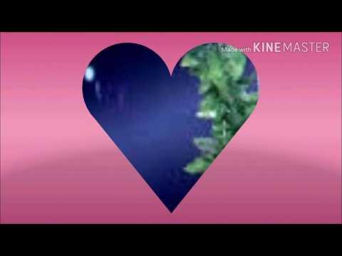 Lirik Lagu Lonceng Cinta - Terjemahan Bahasa Indonesia