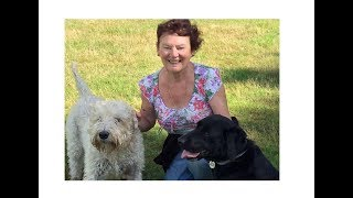 Barking Mad Bromley Host Iris With Dog Holiday Guest