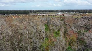Video still for Yoder & Frey Auctioneers LLC -  2020 Florida Auction