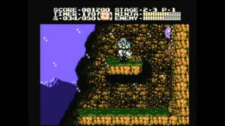 CGRundertow - NINJA GAIDEN II: THE DARK SWORD OF CHAOS for NES Video Game Review