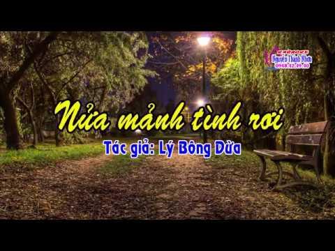 Karaoke vọng cổ NỬA MẢNH TÌNH RƠI - ĐÀO [T/g Lý Bông Dừa]