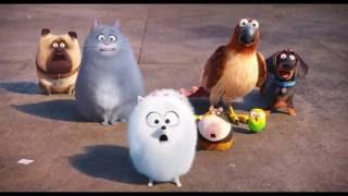 Тайная жизнь домашних животных - Русский трейлер (2016) [Full HD]