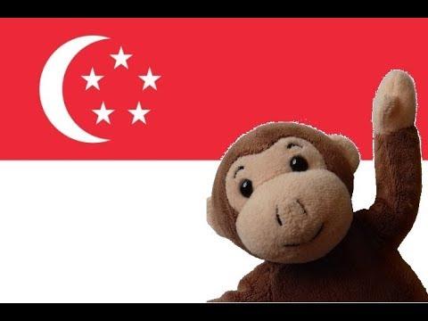 Globe Monkey goes to Singapore