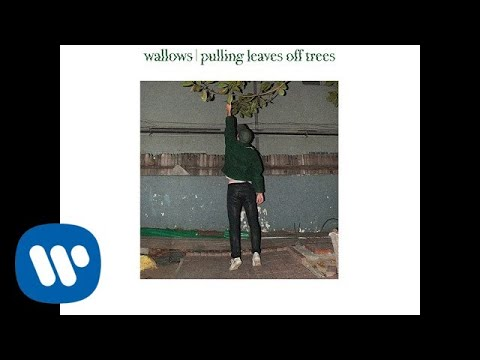 Wallows - Pulling Leaves Off Trees (Official Audio)