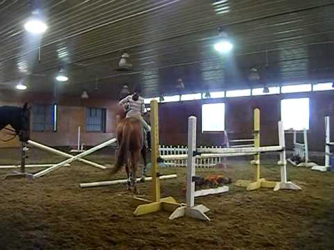 How to do an emergency dismount off a 17.3 horse :]