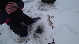 Зимняя рыбалка Ловля на безмотылку сороги плотвы на Горе Море зима 2018 2019г