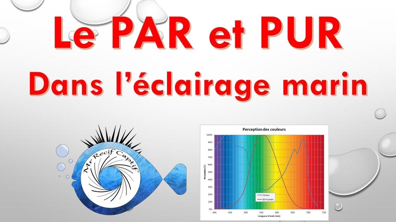 Le Par Et Le Pur Pour L Eclairage Recifal Mr Recif Captif 113
