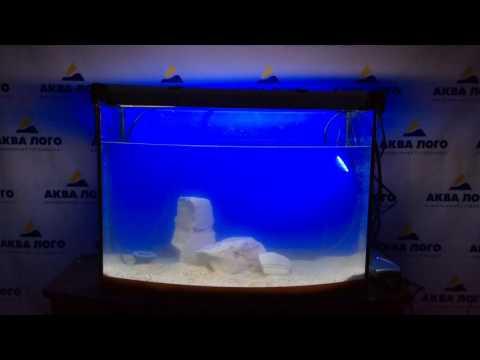 Как украсить аквариум к Новому году #1