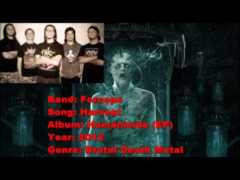 Death Metal Bands From Brazil
