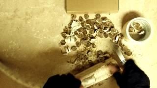 INRON. 9Cr13MoV, рез каната после заточки на алмазах Fine Edge Pro(Тест заточки 9Cr13MoV на алмазах, угол заточки 44 градуса, манильский пеньковый канат 19 мм., 2015-05-28T02:14:02.000Z)