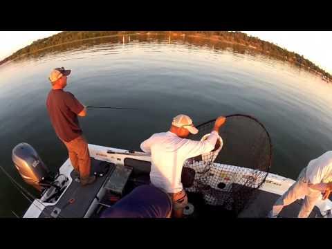 Fishing For MONSTER Muskies In Bemidji, Minnesota