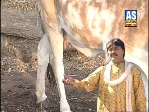 Joyo Re Joyo Solanki Sardar - Latest Gujarati Bhajan | Singer Suresh Rawad