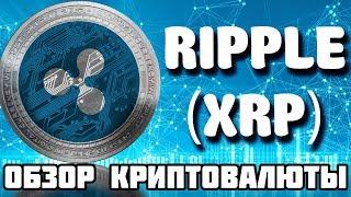 ripple (XRP) криптовалюта обзор, как купить, кошелек, прогноз и перспективы Рипл