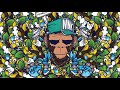 [ Drum And Bass Reggae 2019 ] LaChips : Monkey Kush