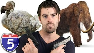 Top 5 Animals Hunted Into Extinction