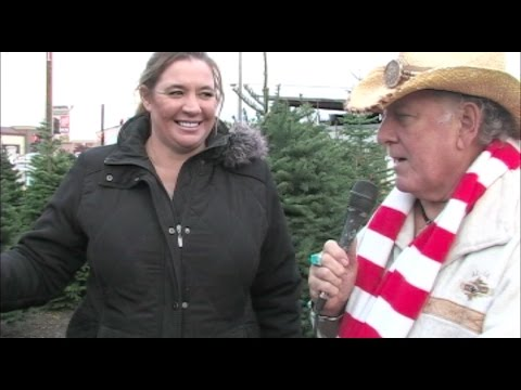 Different Types Of Christmas Trees - Christmas Tree Lot Tour 2016