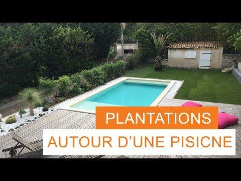 Tous Au Jardin Episode 4 Que Planter Autour D Une