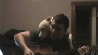 飼い主さんのことも、飼い主さんが奏でるギターと歌も大好きすぎるワンコ
