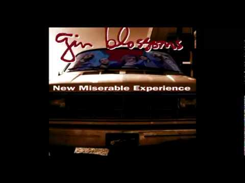 Gin Blossoms - Pieces of The Night