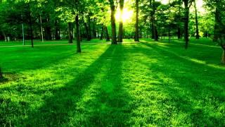 lagu pembangkit semangat di pagi hari - Stafaband