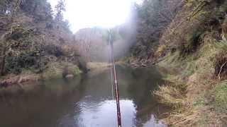 Huge Fish! Fall Chinook Salmon Fishing in NW Oregon GoPro
