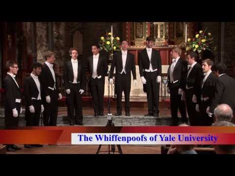 Yale Football Fight Song Medley  by The Yale Whiffenpoofs of 2013
