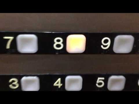 Custom Dover Impulse Traction Internal Elevators At The Park Vista By Doubletree Hilton