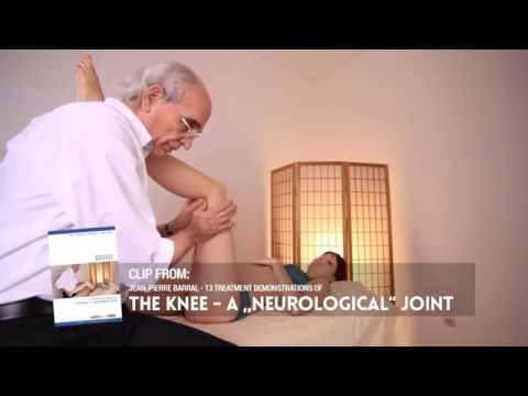 The Knee – a neurological joint | new manual articular approach | Jean-Pierre Barral D.O. (UK)