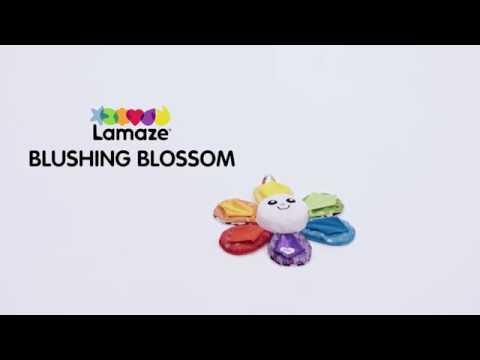 Blushing Blossom