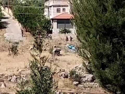 Arab mob approaches Beit El (Mordechai Sones)