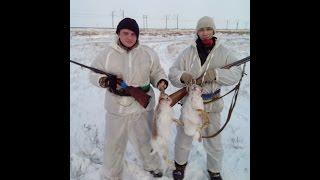 ☝▶Невероятная ОХОТА ЗИМОЙ НА ЗАЙЦА. Тропление зайца. Взяли 2 зайца  ИЖ-12 Hare Hunting in Kazakhstan