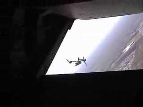 Osprey Fam Flight