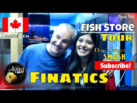 Aquarium Fish Store Shop Tour Of Finatics 🐠 RARE African Cichlids Store