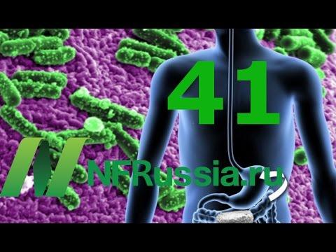 №41 Бобовые снижают уровень сахара в крови даже на следующий день. Доктор Майкл Грегер