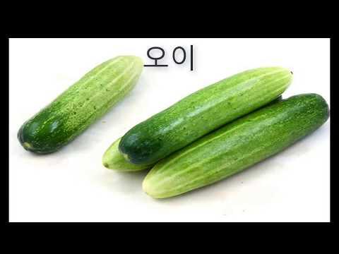 Học tiếng Hàn - Tiếng hàn tổng hợp 1 (từ mới bài 1)