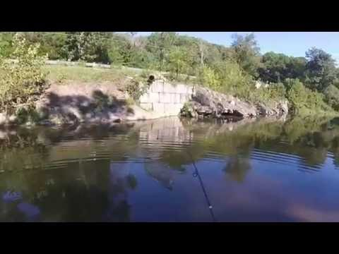 Surprise Big Bass In Tiny Creek On A Jerkbait.