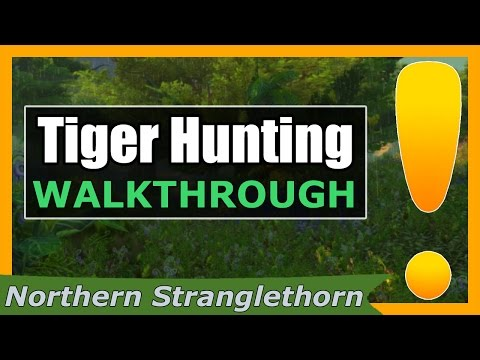 Tiger Hunting   WoW Northern Stranglethorn Quest Guide