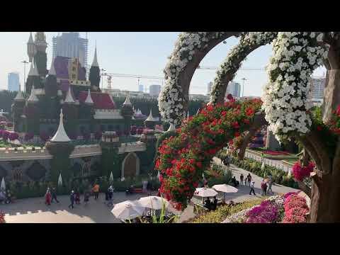 UAE, Dubai, Miracle garden
