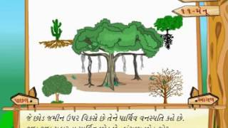 Learn Science | Class 4 | Plant Life | Adaptation in Plants | Gujarati