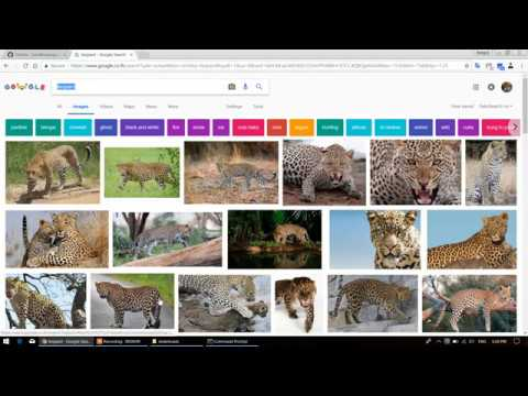 Download multiple photo from google search engine. #1