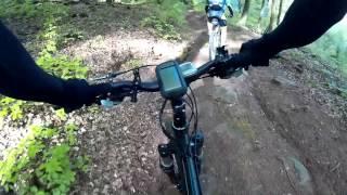 MTB Trail Pfälzer Wald Tour 2 richtung Sägmühlweiher Trippstadt