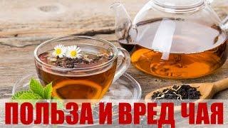 Как действует черный чай на организм: повышает или понижает давление?