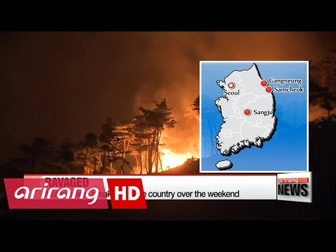 Forest fires continue to rage in eastern Korea