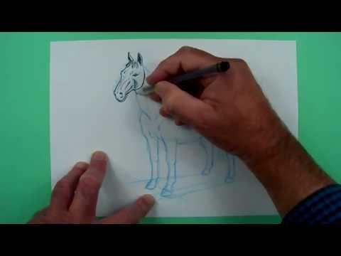 Wie zeichnet man ein Pferd ? Zeichnen für Kinder