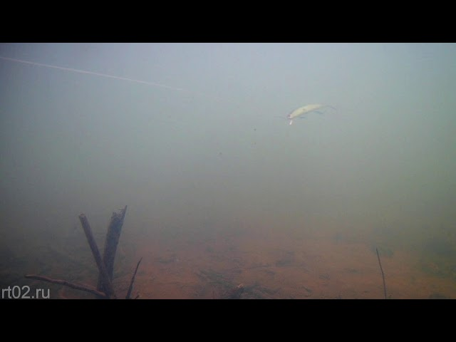Копия Strike Pro Slingshot minnow 120 от Wlure  M616 (подводная съемка)