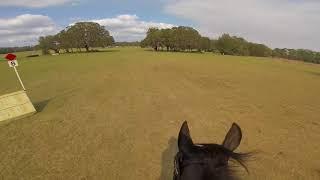 Helmet Cam: Simply Priceless (Advanced   2018 Rocking Horse Winter II)