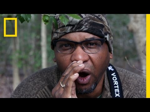 Bird-Watching While Black: A Wildlife Ecologist Shares His Tips | Short Film Showcase