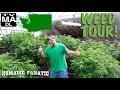 INSIDE ~ Tour A LEGAL Pot Farm in Washington!!!