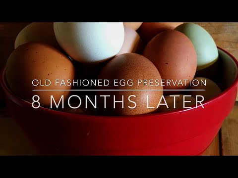 Old Fashioned Egg Preservation 8 Months Later - No Refrigeration! Homesteading Family